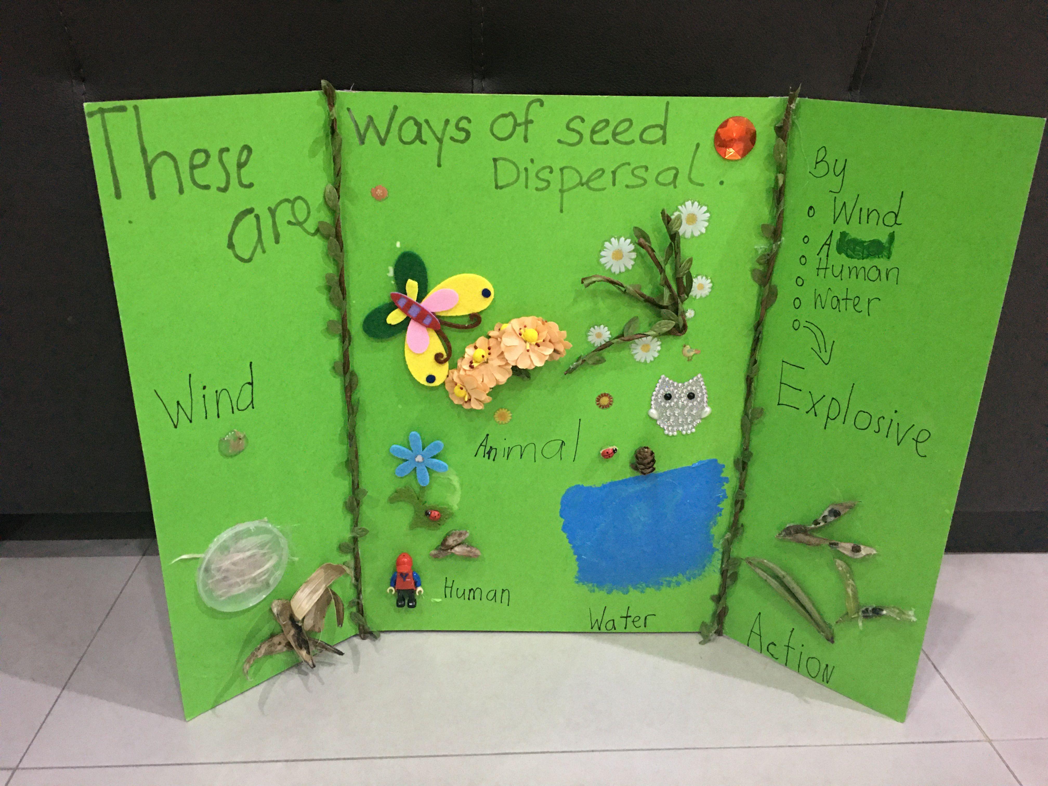 Seed Dispersal Method