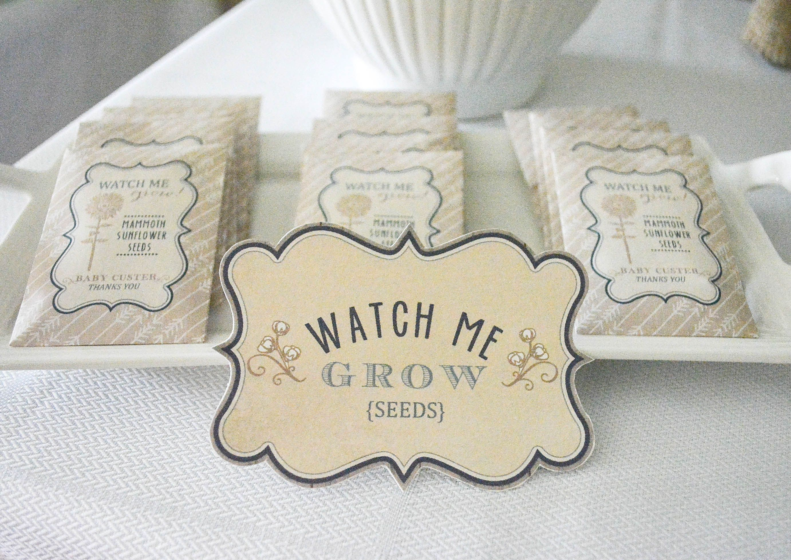 Printable seed packets | Baby shower ideas | Pinterest | Rustic baby ...