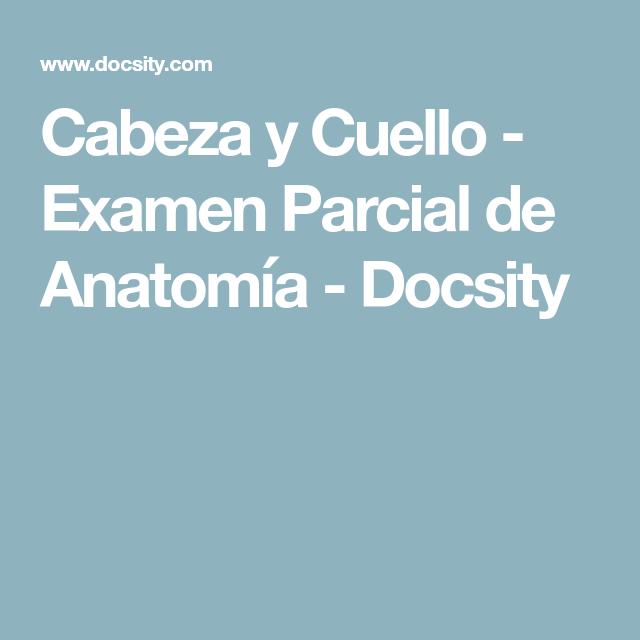 Cabeza y Cuello - Examen Parcial de Anatomía - Docsity | Medicina ...
