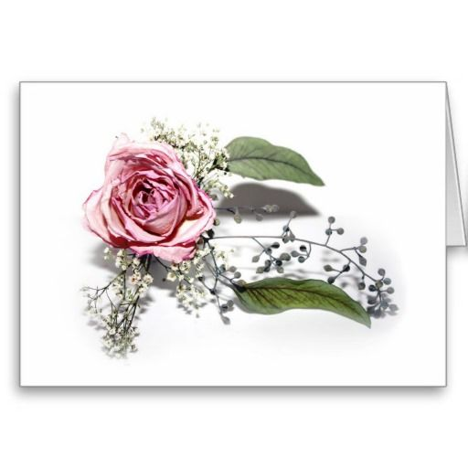 The Art of Aging Gracefully Card   #Gravityx9 #anyoccasion  #blankcard #zazzle #notecard #rose