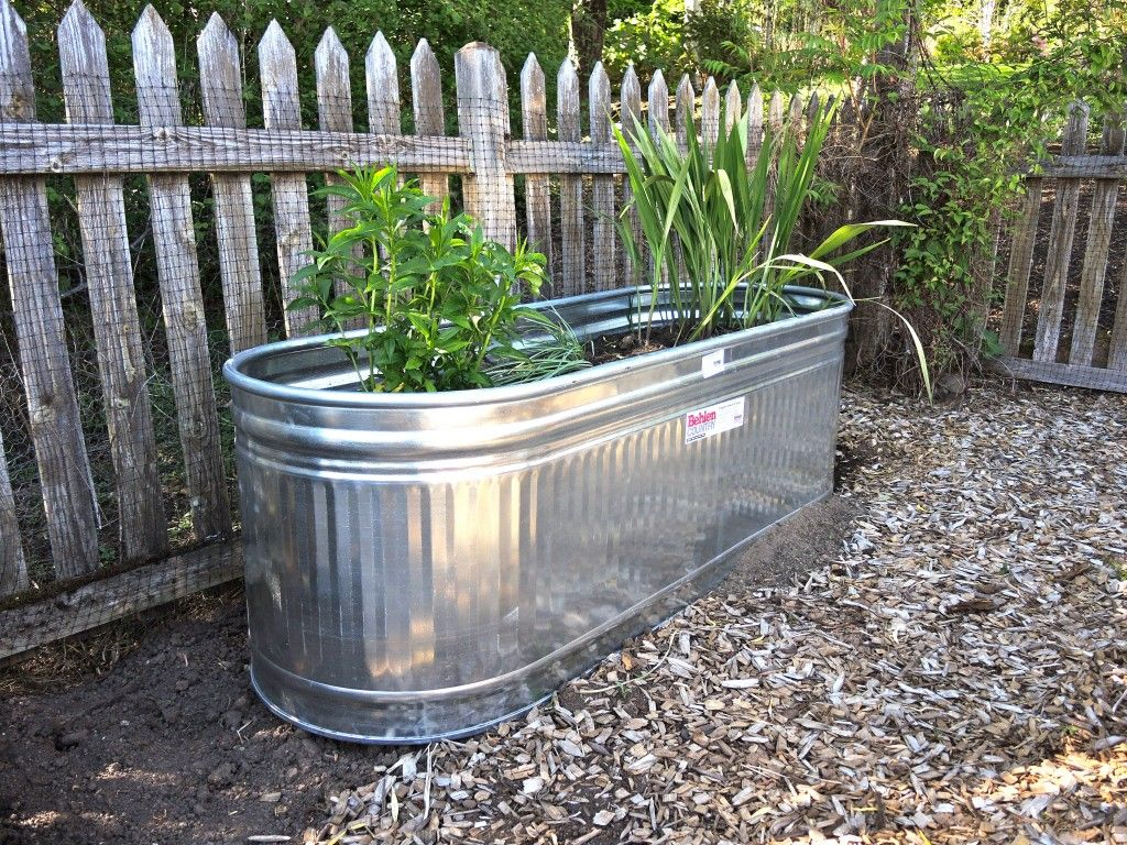 Galvanized Water Tanks Used As Raised Bed Planters For Flowers Steel Planters Trough Planters Garden Planter Boxes