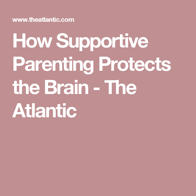 How Supportive Parenting Protects Brain >> Why Kids With Supportive Moms Do Better In School And Life