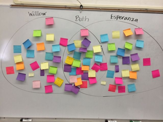 We made a huge venn diagram on the white board students had to we made a huge venn diagram on the white board students had to compare and contrast 2 characters from different books we have read ccuart