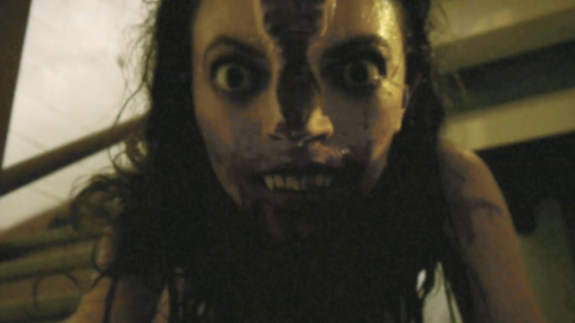 V/H/S - Adam Wingard, David Bruckner, Ti West, Glenn McQuaid