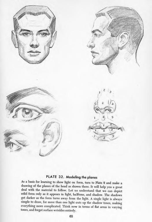 Drawing The Head And Hands By Andrew Loomis Anatoref Art Anatomy
