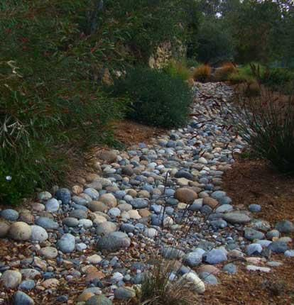 Garden Design Dry River Bed a dry creek bed complete with australian natives. this is almost