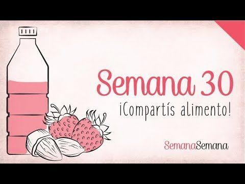 b89c9b4aa Semanas de embarazo (1-40) - YouTube