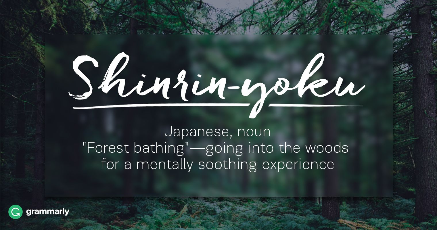10 Breathtaking Foreign Words Cool Words Unusual Words Words Quotes