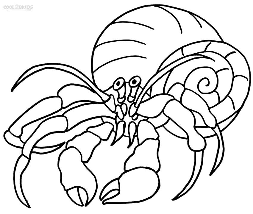 Printable Hermit Crab Coloring Pages Animal Coloring Pages Coloring Pages Crab Crafts