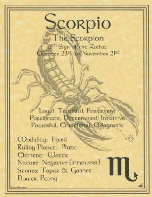 Scorpio Zodiac Poster Parchment Page Book of Shadows Horoscope