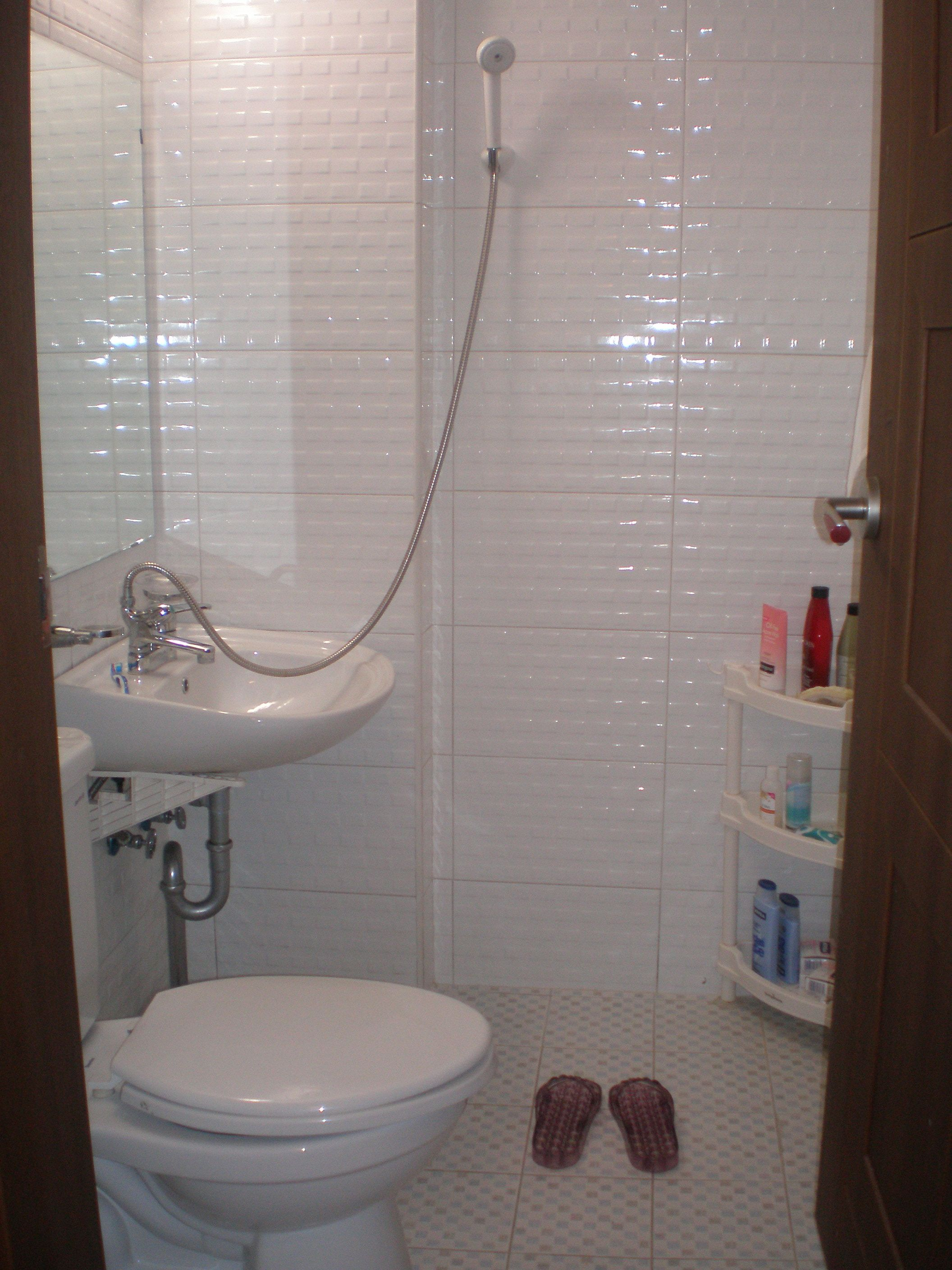shower over toilet - Google Search | Bathrooms by Hayley Whitford ...