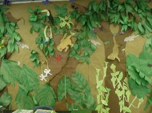 Turn your classroom into a Rainforest for the new school year. So much to learn about - animals, climate, habitats, food! Have fun