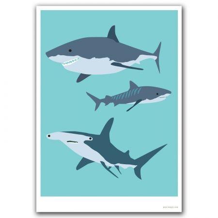 hardtofind. | Bush buddy shark print