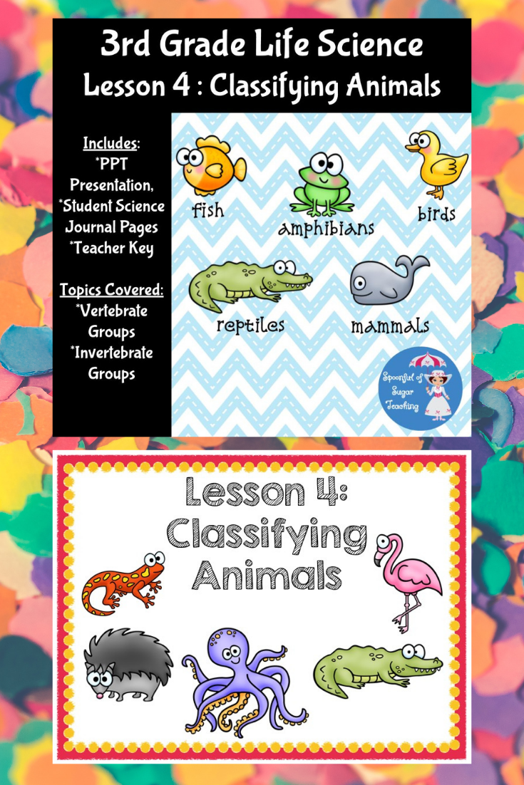 Classifying Animals 3rd Grade   Life science lessons [ 1102 x 735 Pixel ]