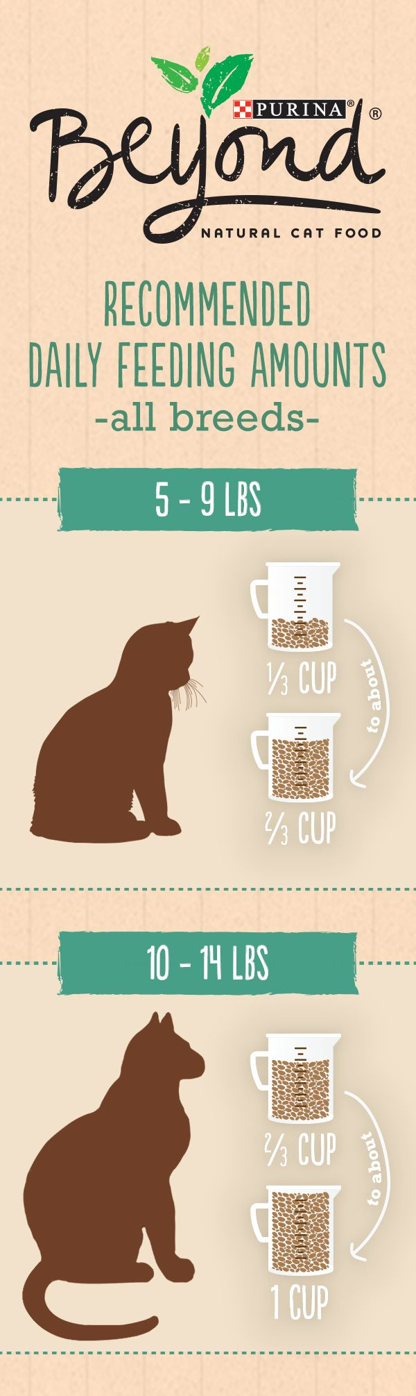 Healthy cat food feeding amounts for Beyond Natural Dry Pet Food: start with this guide, but keep in mind that your cat's needs may change based on age, activity level and environment. If you're switching foods, allow 7-10 days for a full transition, and be sure to keep clean, fresh water available for your cat at all times.