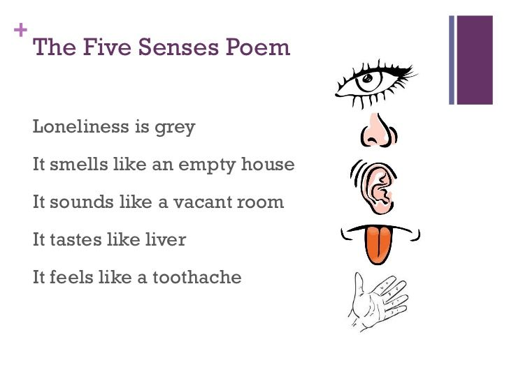 five senses poem With all five senses : poems [hans w cohn] on amazoncom free shipping on qualifying offers poetry the english poet michael hamburger, author of the introduction to the present volume, has long championed hans w cohn.