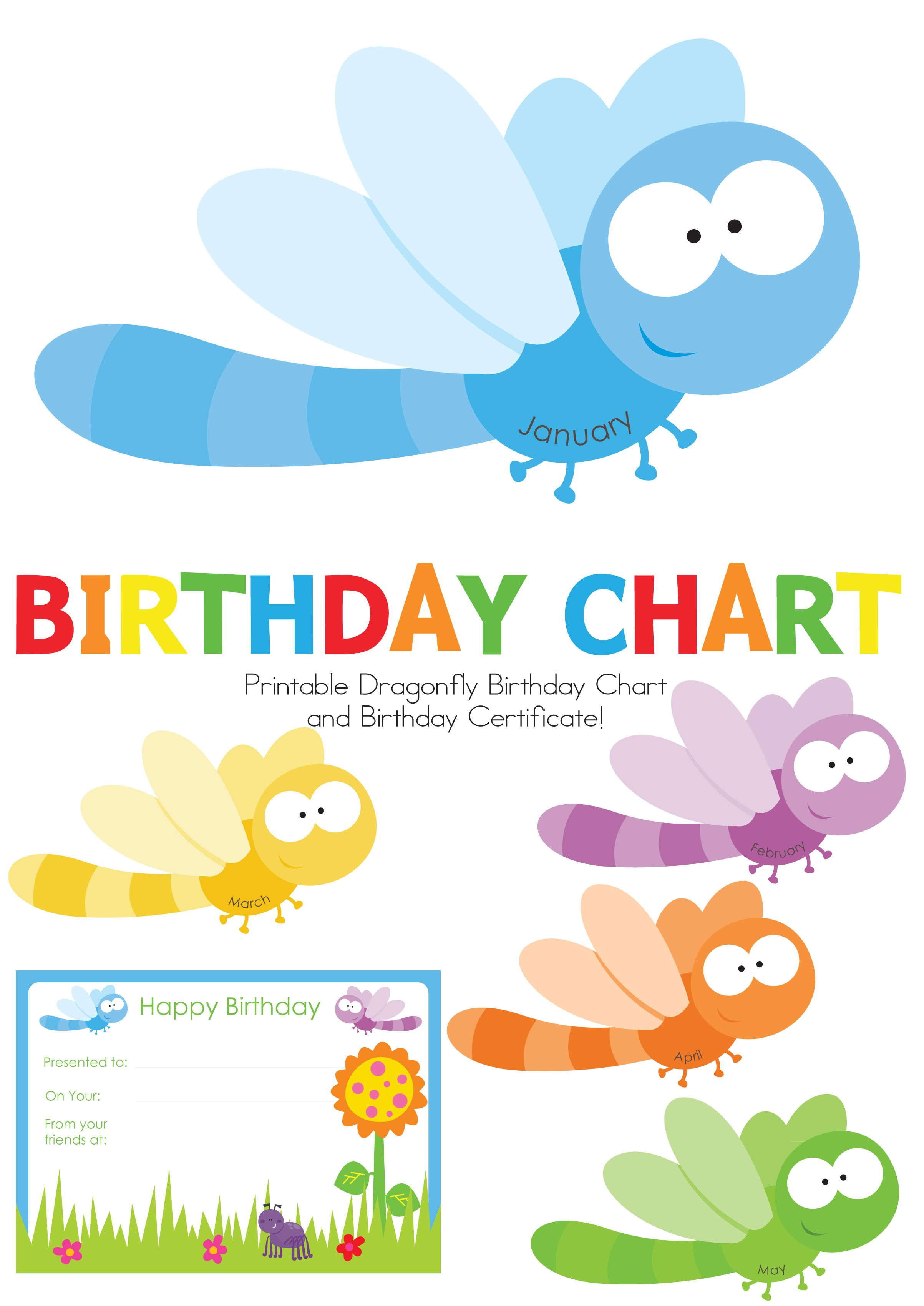 If you are a child educator you will love our new dragonflies if you are a child educator you will love our new dragonflies birthday chart display your childrens birthdays in the cutest way nvjuhfo Gallery