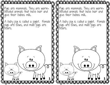 Three Little Pigs--Activities for you or your Sub