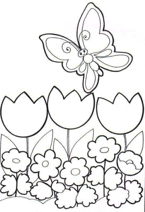 Imagenes de flores para imprimir coloridas - Imagui   moldes dibujo ...