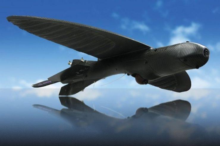 Maveric - беспилотник, который маскируется под птицу Jets, planes