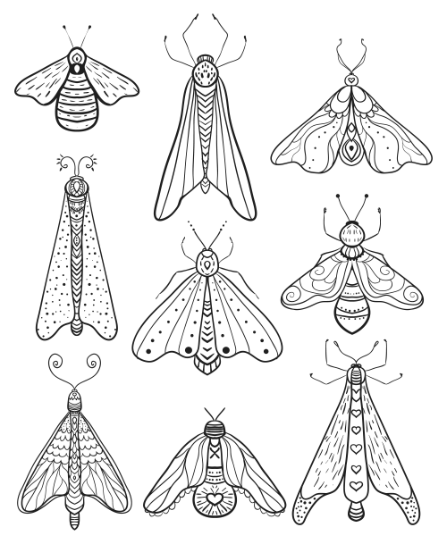 Cinco De Mayo Activities Insect Coloring Pages Bug Coloring Pages Insect Art