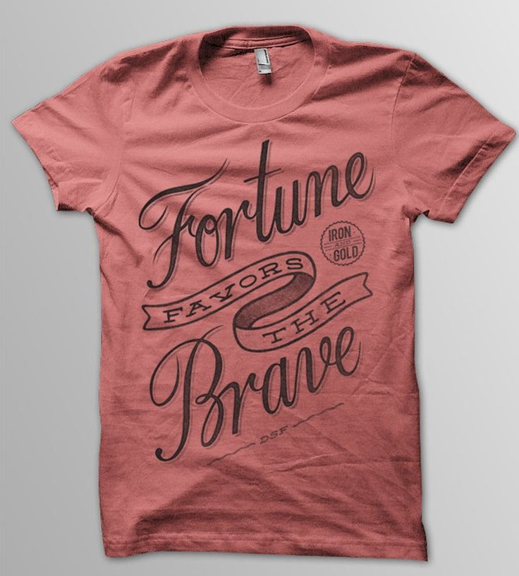 Fortune Favors the Brave by Damian King