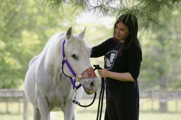 The white mare named Lily, who was adopted by the Stewarts after she was found seemingly abandoned, was euthanized Sunday after falling and breaking a bone in its neck at their Middletown farm. Pictured: Tracey Stewart with Lily