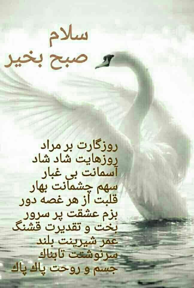 روزگارت Persian Quotes Persian Poem Love Words