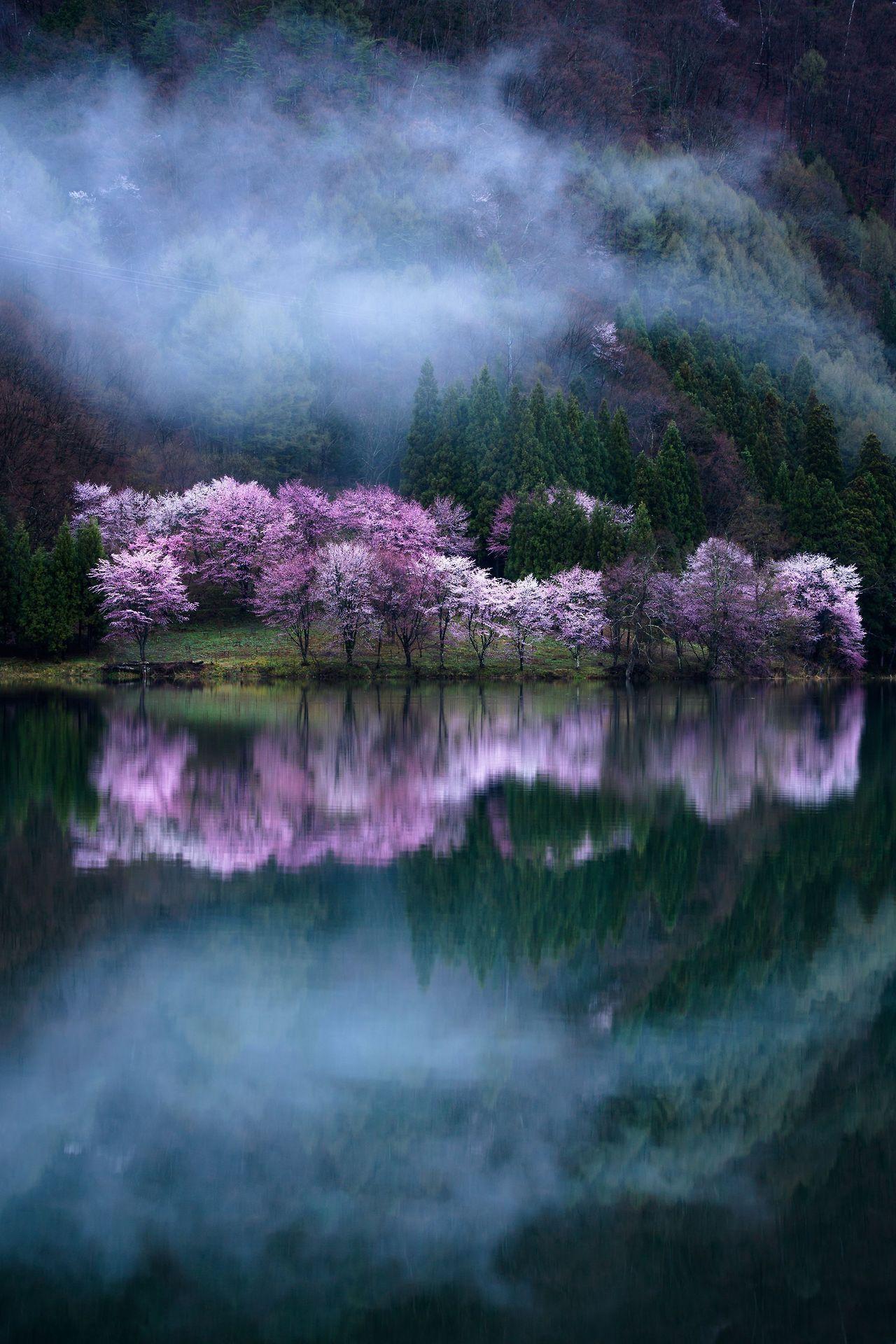 Amazingly Beautiful Nature Photographs National Geographic Photography Nature Photography
