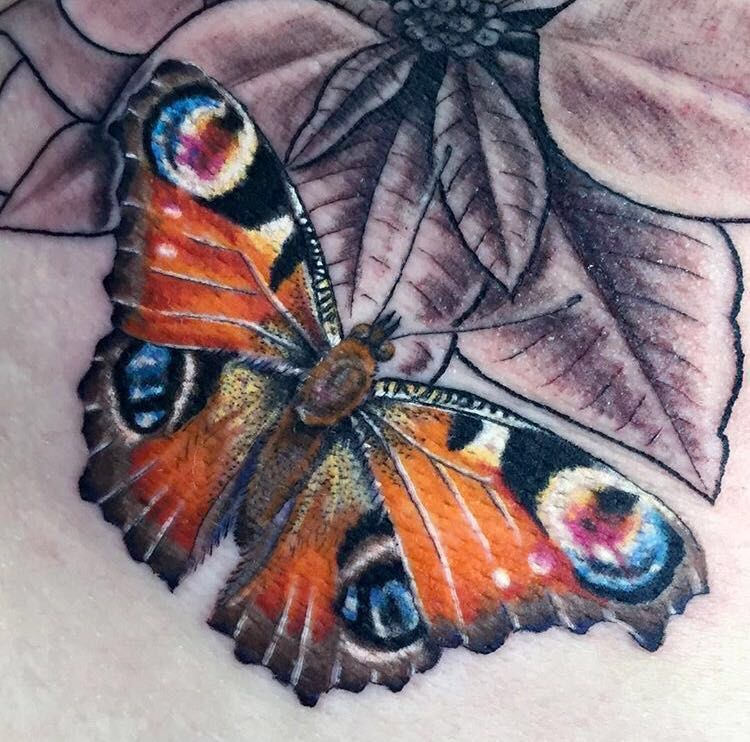 Peacock Butterfly Tattoo Realism Colour Butterfly Tattoo Realistic Butterfly Tattoo 3d Butterfly Tattoo