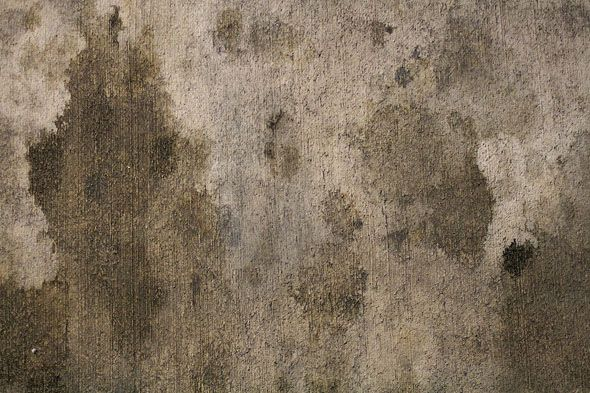 the daily fix: remove oil stains from a garage floor | cleaning