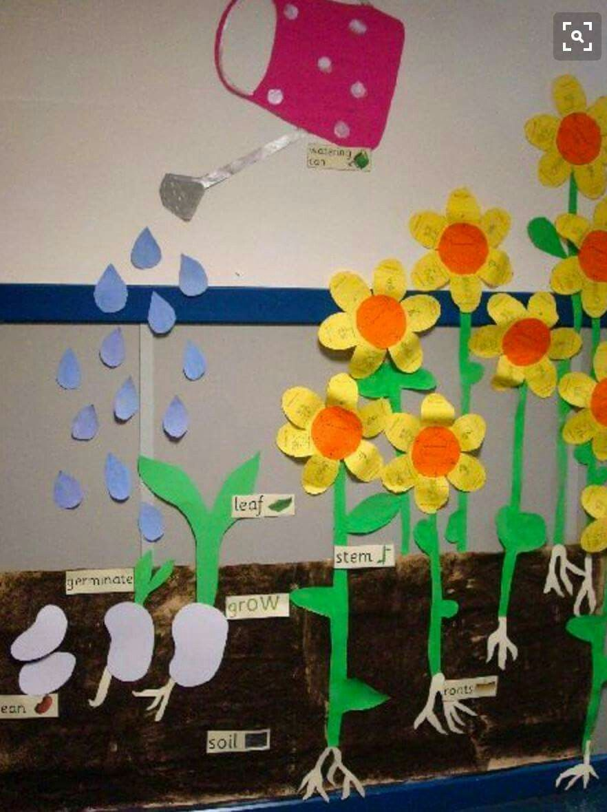 Garden Bulletin Board Ideas Pin by jessica cunningham on pre k pinterest bulletin board and identify the major parts of plants including stem roots leaves and flowers plant growth board idea for spring sciencer my science bulletin board in workwithnaturefo