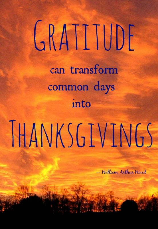 A quote that isn't JUST for Thanksgiving!! http//thestir