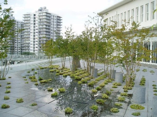 Keio university roof garden by michel desvigne tokyo for Jardin couvert lyon