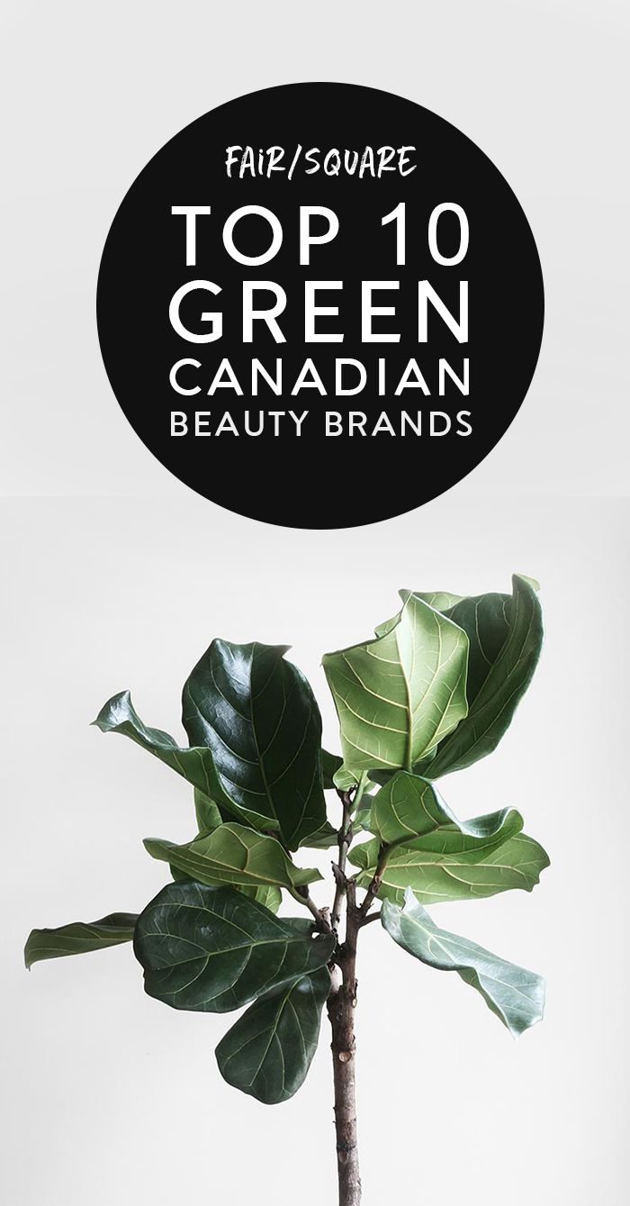 Top 10 Green Canadian Beauty Brands Natural Beauty Vegan Beauty