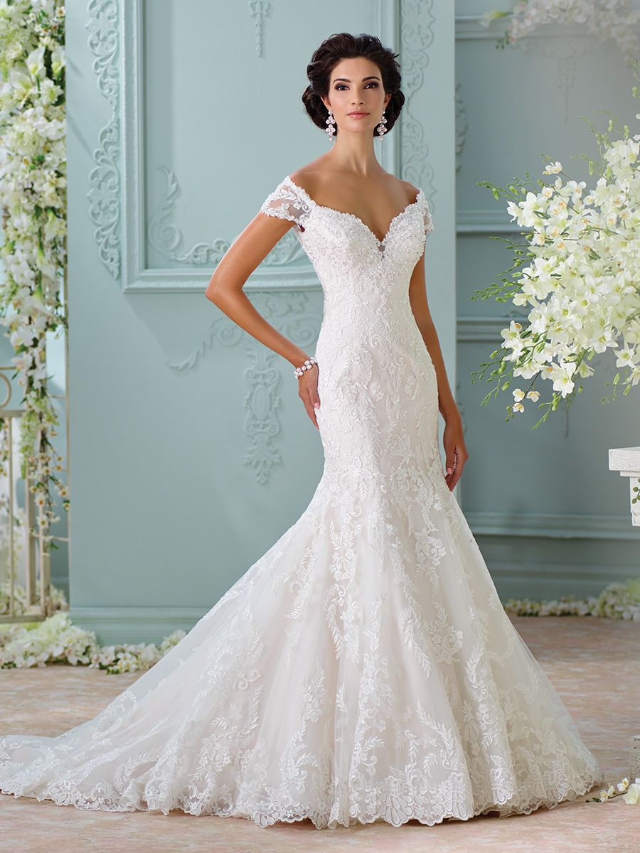 David Tutera for Mon Cheri Bridals + Sophia Tolli Look Book | David ...