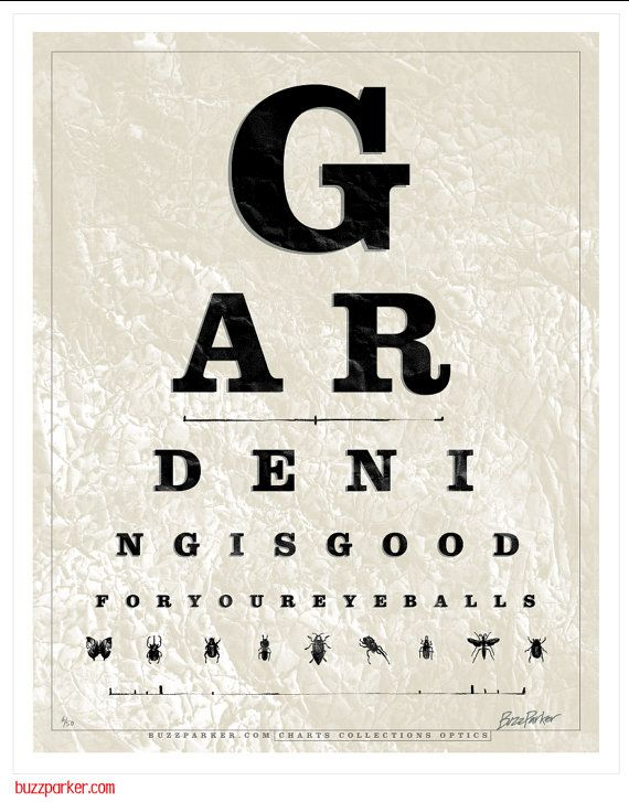 Just Plain Fun For The Gardener Eye Chart Gardening Gifts For Mom Limited Edition Art Print