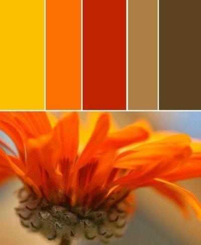 Resultado de imagen para colores que combina con el naranja - colores calidos para salas