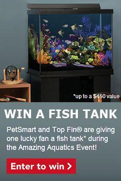 Win A Fish Tank From Petsmart Fish Tank Petsmart Tanked Aquariums