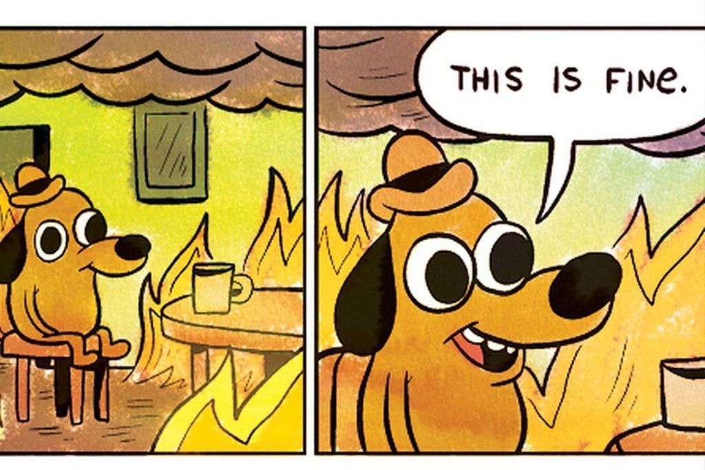 Best Memes Of The Decade Every Meme From The Last 10 Years This Is Fine Meme Funny Pictures This Is Fine Dog