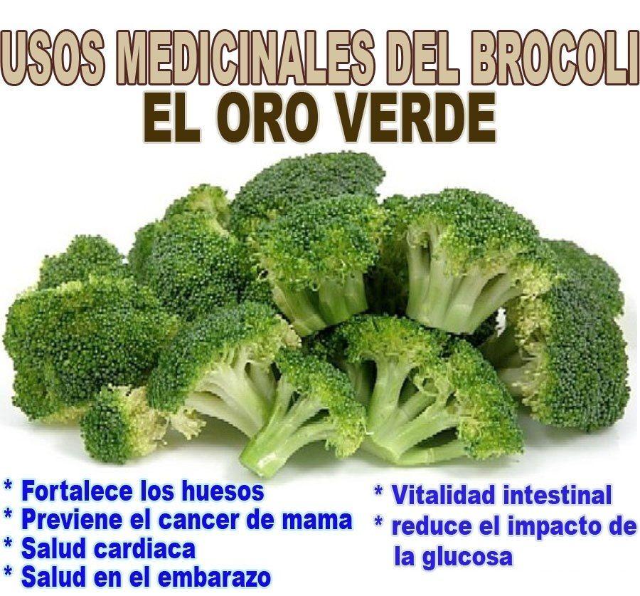 Alimentos Curativos Y Plantas Medicinales Vegetables Growing Vegetables Different Vegetables