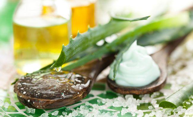 Aloe Olio: proprietà lenitive e calmanti.