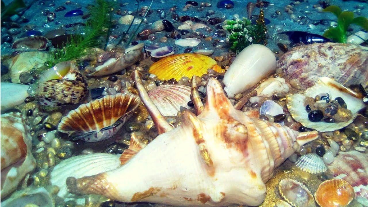 Морское панно своими руками фото 248