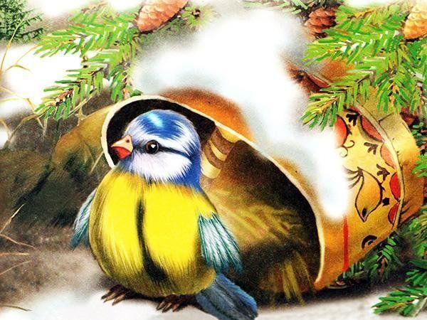 этого синичкин календарь картинки январь походе