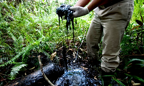 Crude oil in an open toxic oil waste pit abandoned by Chevron in the Ecuadorean Amazon Rainforest | U.S. Judge Sides With Chevron in Case Against Ecuadorians, Allows Oil Giant to Evade Justice