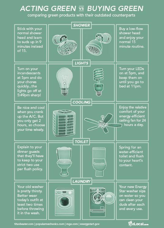 Infographic Compares Acting Green Vs Buying Green Products Green