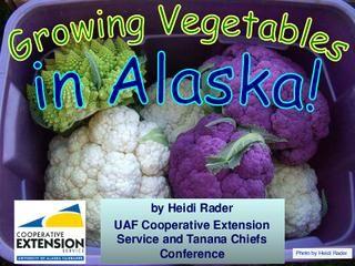 Growing Ve ables in Alaska Indoor GardeningContainer