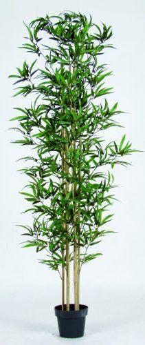 Bamboo Artificiale Verde - U.V.R. - H.180cm - 6 Canne - Vaso Incluso NewGreen http://www.amazon.it/dp/B00BKX72CU/ref=cm_sw_r_pi_dp_5BuTub0YEVKGZ