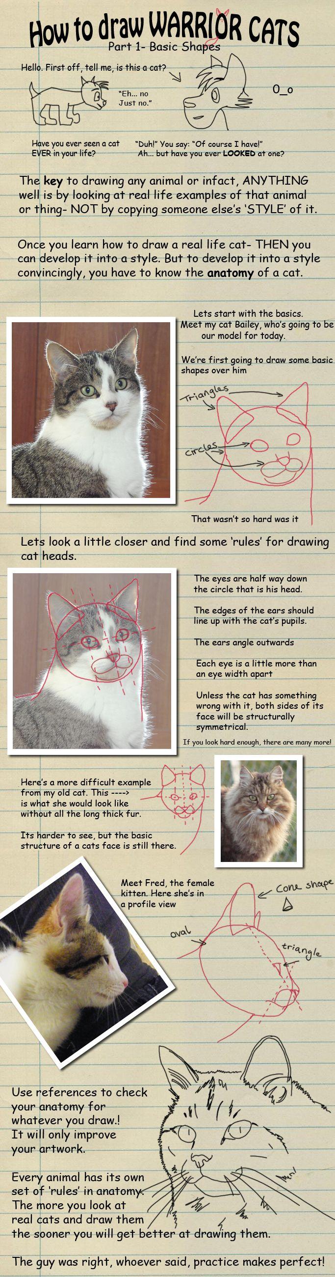 How to draw Warrior Cats pt 1 by *heylorlass on deviantART | Art ...
