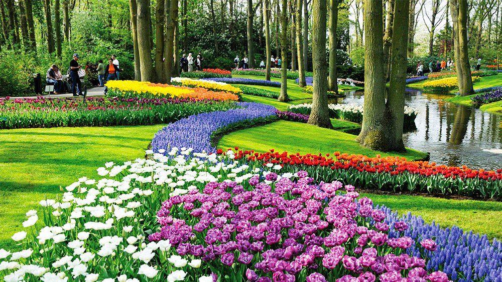 Keukenhof Garden in the Netherlands is a HUGE, beautiful